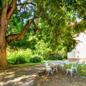 szallas arboretum